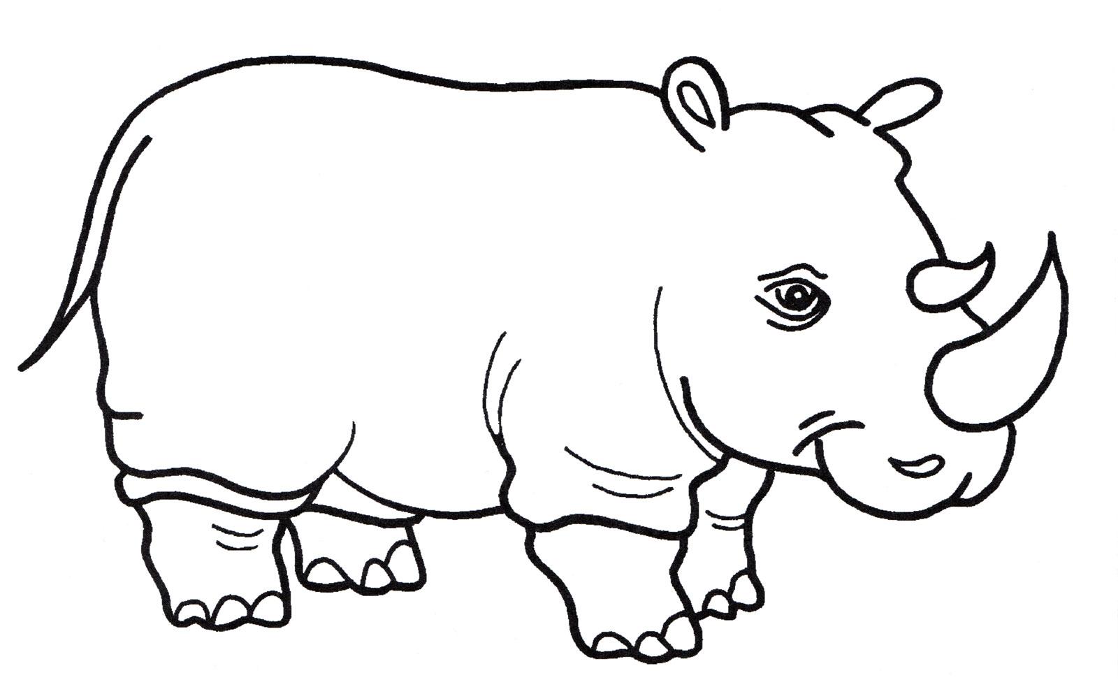 раскраска носорог раскраски с носорогом