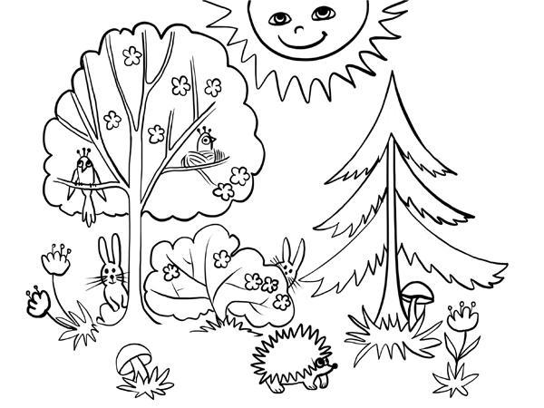 соевый лес для раскрашивания технической точки зрения