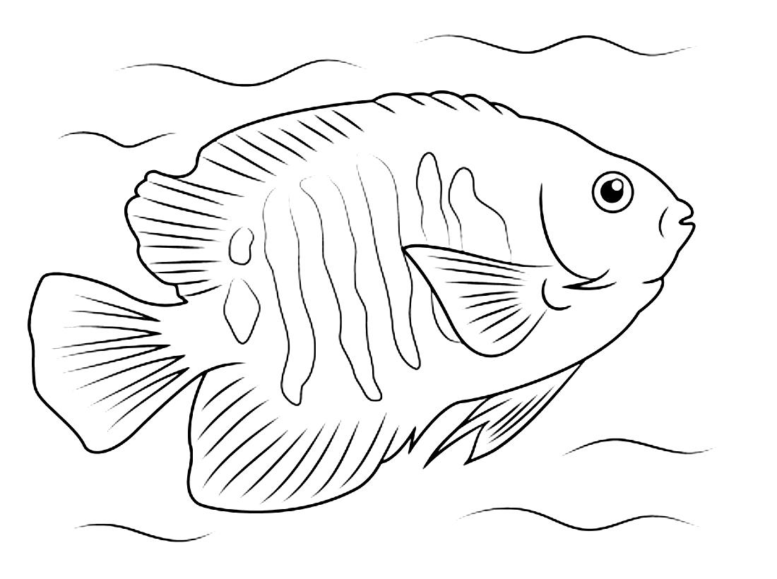 морские рыбки раскраска безруков поделился