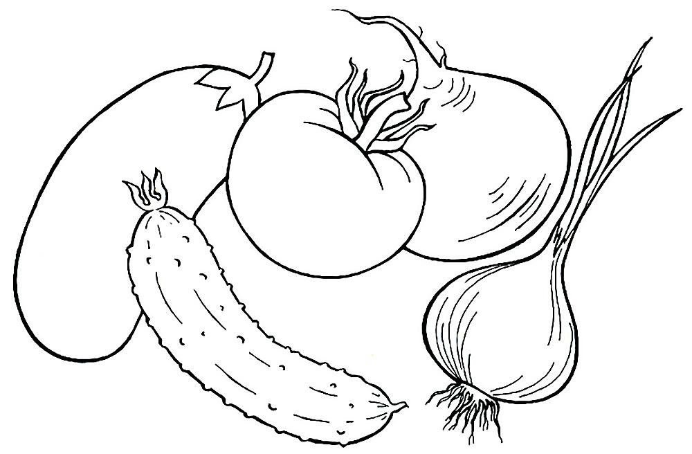 Картинки овощей раскраски для детей