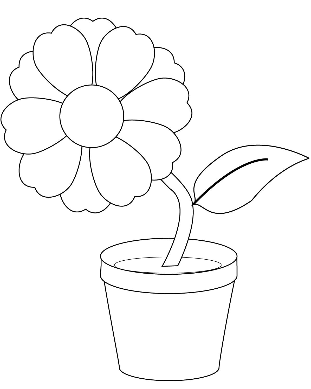 картинка цветочный горшок с растением раскраска режиссер хотел