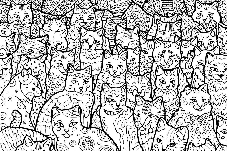 конечно, картинка много котиков черно белая поразили