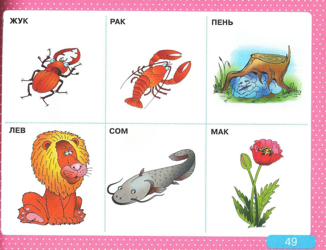 Логопедические картинки для занятий речи
