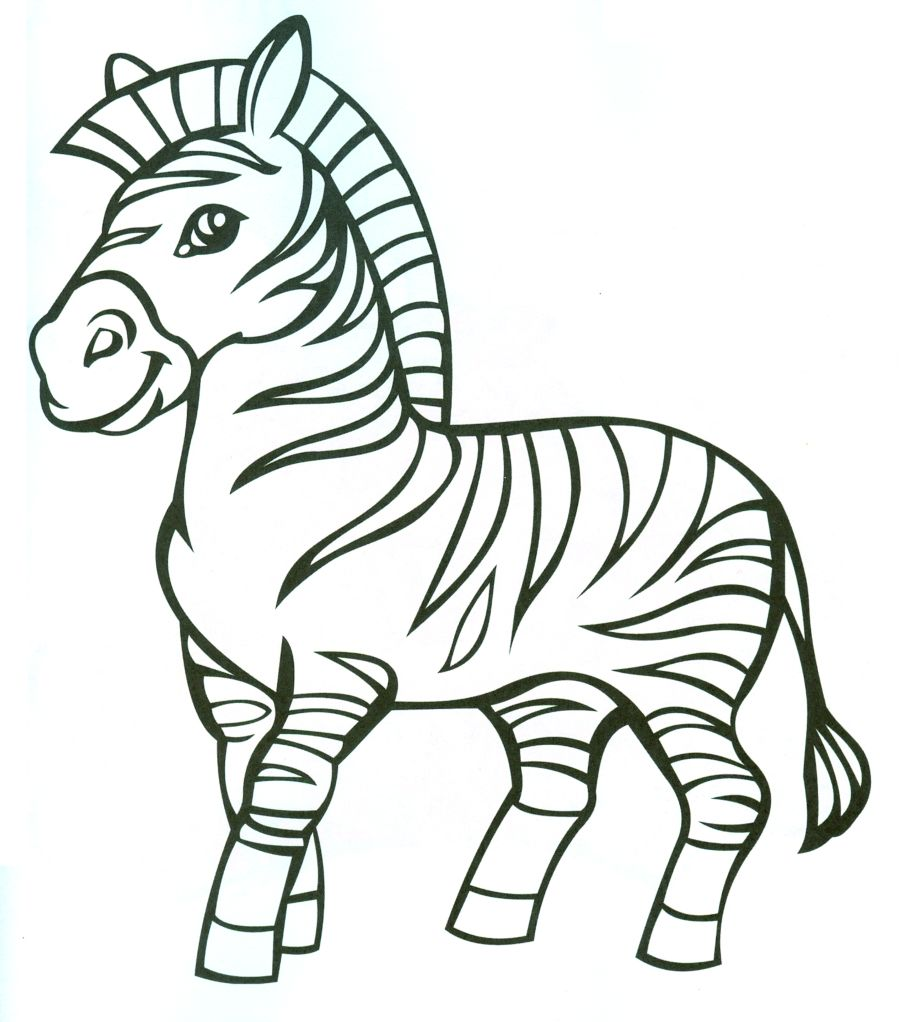 Раскраска Полосатая зебра животные скачать и распечатать